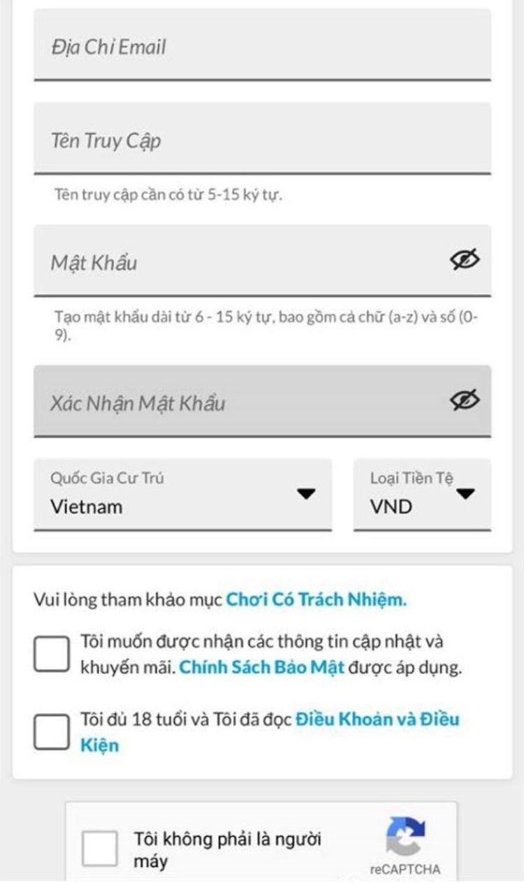 form điền thông tin trên điện thoại